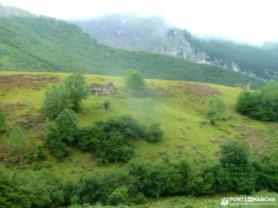 Corazón de Picos de Europa;lavanda brihuega ulaca manchuela ruta del rio borosa viajes originales c